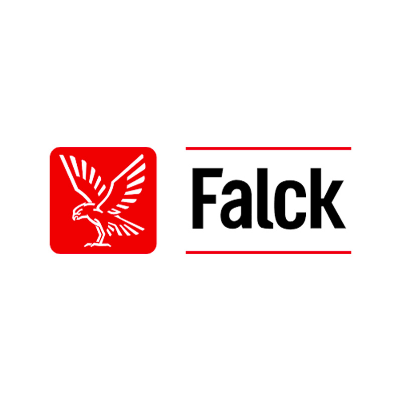 SDG Lead - Falck
